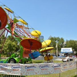 Tampa Downtown Carnival