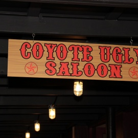 Coyote Ugly: Friday