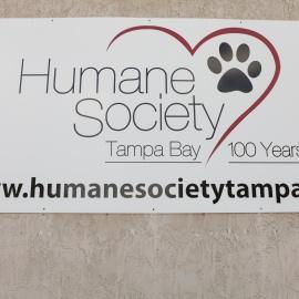 Hard Rock: Humane Society of Tampa Bay