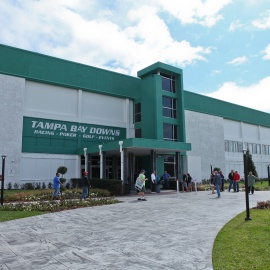 Tampa Bay Downs: Festival 35