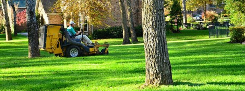 Landscape And Lawn Services Home Improvement In Tampa Fl