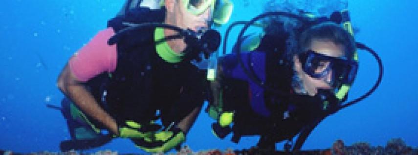 Key West Scuba Diving - Key West Dive