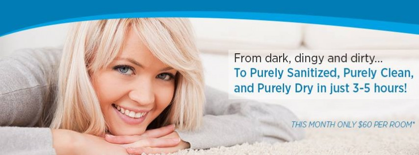 Pure Clean - Seattle Carpet Cleaning