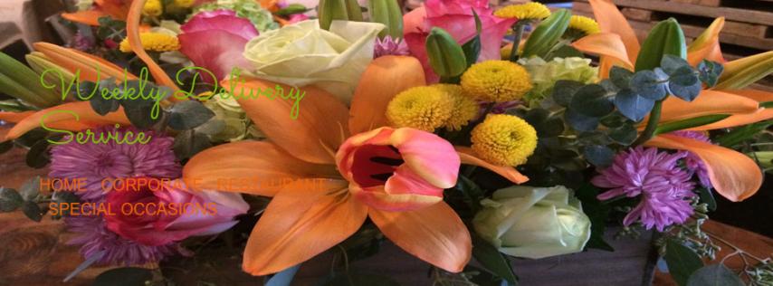 Westchase Flower Co-op