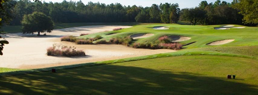 Skyview Golf at Terra Vista
