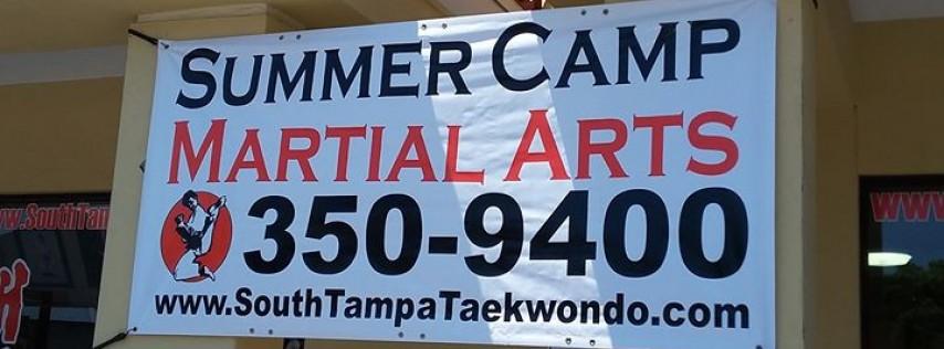 Traditional Taekwondo Center of South Tampa