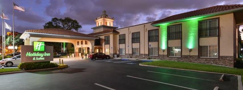 Holiday Inn & Suites - Tampa North Busch Gardens