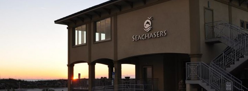 Seachasers