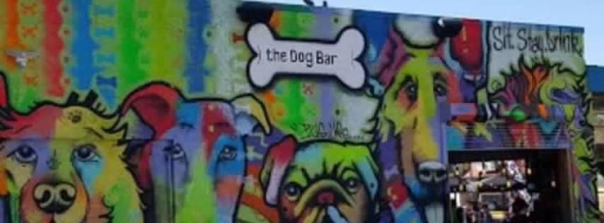 Dog Bar St. Pete