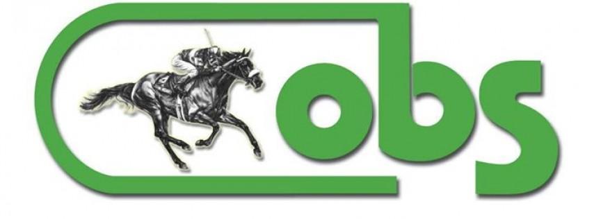 OBS - Ocala Breeders' Sales
