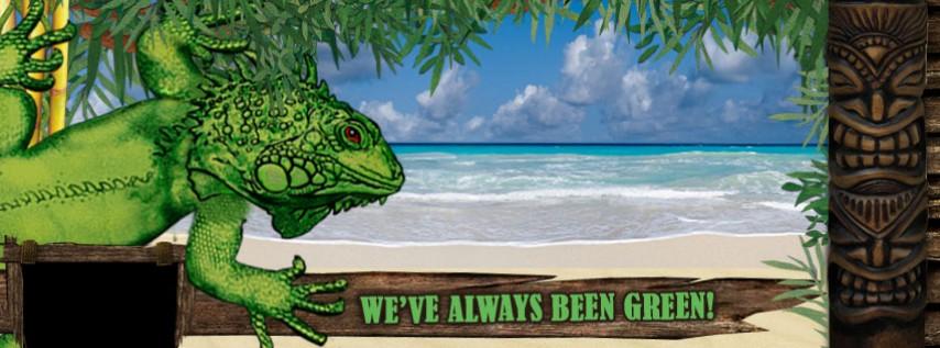 Green Iguana South Westshore
