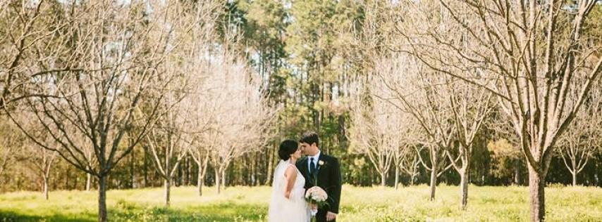 Beaver Creek Weddings