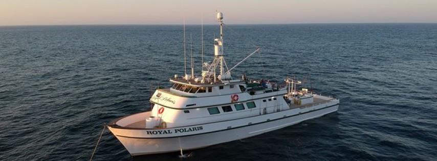 Royal Polaris Sportfishing