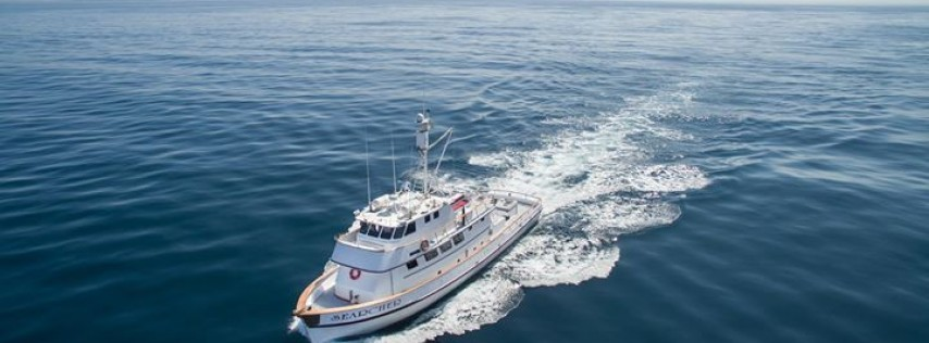SearcherSportfishing