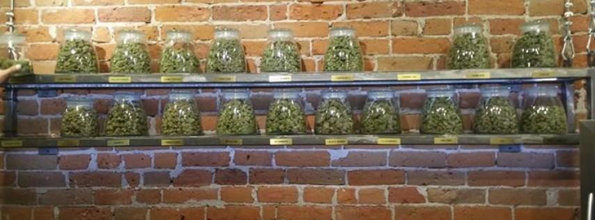 420 Friendly Denver