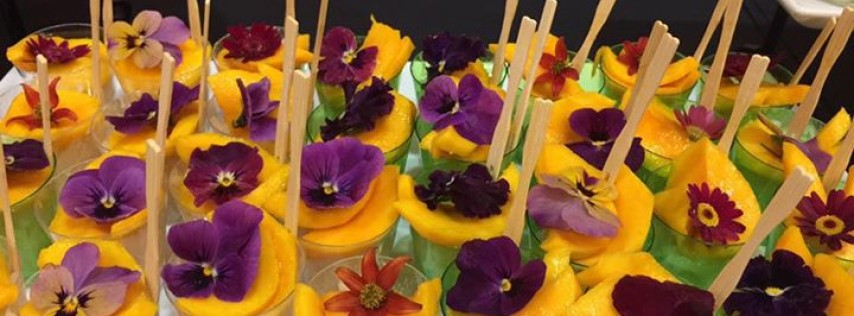 Supannee House of Thai & Catering
