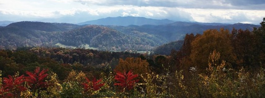 Great Cabins in the Smokies 866-409-7066