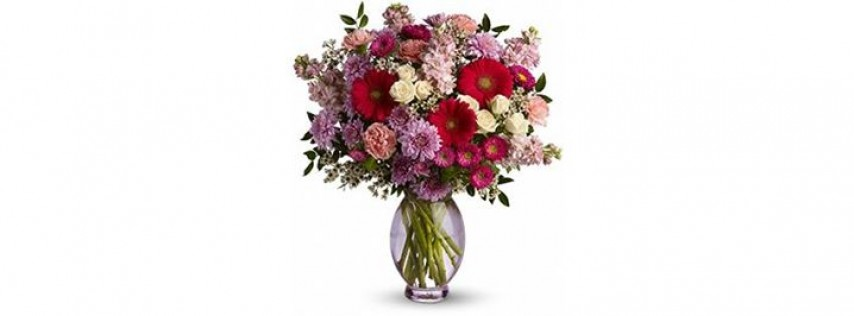 All Occasion Florist