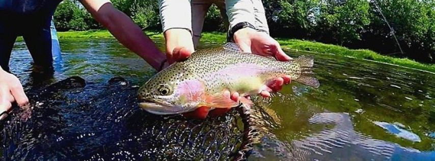 Tennessee Valley Anglers