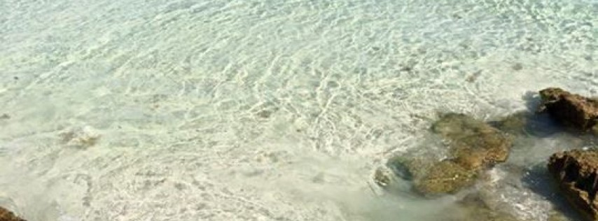 Coquina Beach - Travel - Bradenton Beach - Bradenton Beach