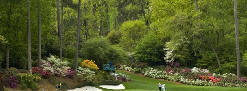 T & D Golf LLC