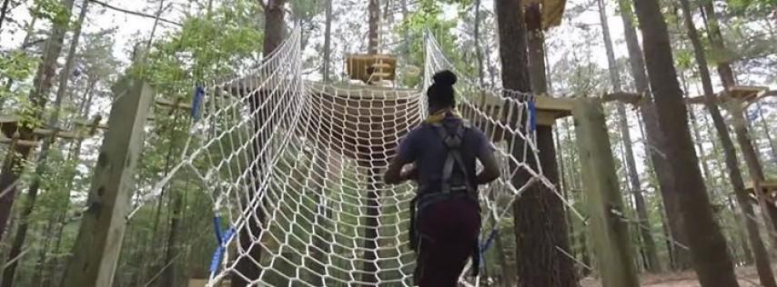 TreeRunner Raleigh Adventure Park