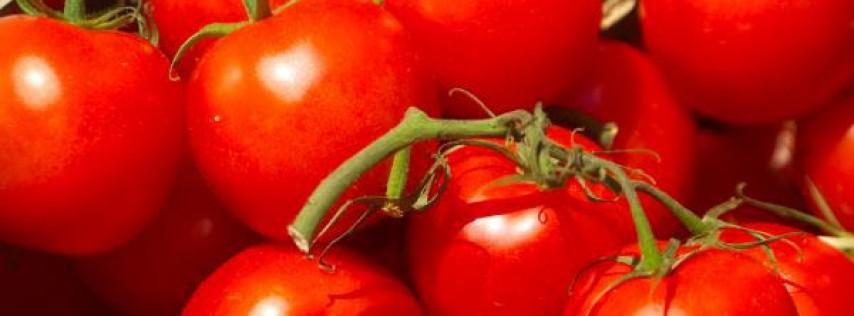 Joe Tomato