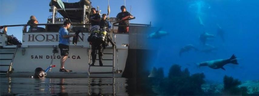 DASC Horizon Scuba Diving Trips