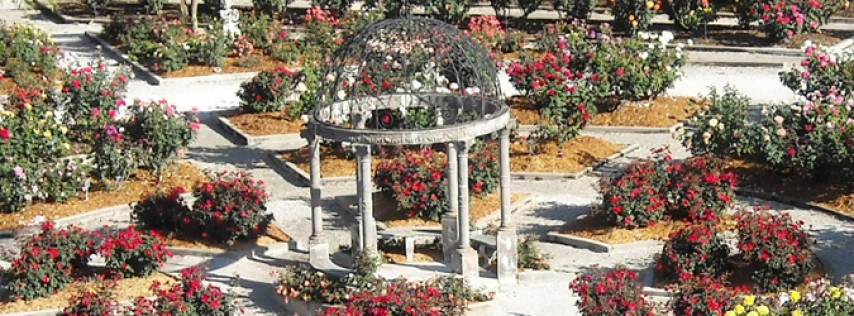 Bayfront Gardens