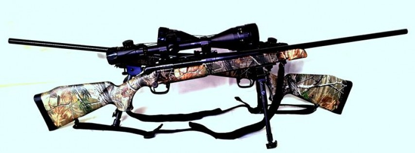 Long Shot Arms LLC
