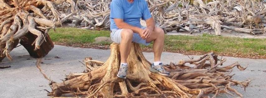 Driftwood Furniture by Mark Arnett