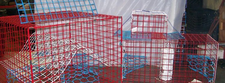 E-Z Catch Saltwater Traps, Pot's & Supplies