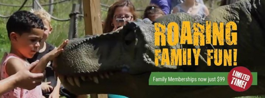 Field Station: Dinosaurs - Travel & Recreation - Union City