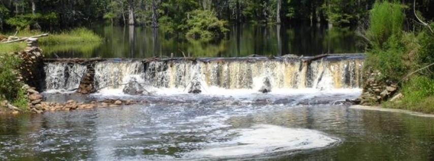 Blackwater Preserve Inc