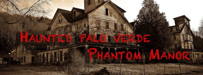 Haunted Palo Verde