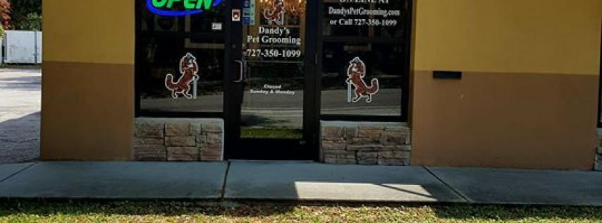 Dandy's Pet Grooming & Boutique