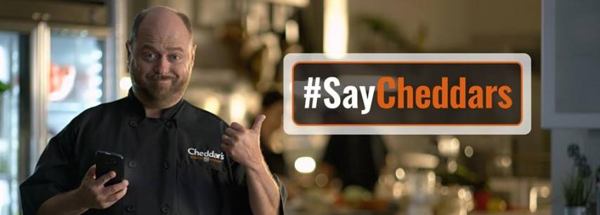 Cheddar's Scratch Kitchen   Carrollwood