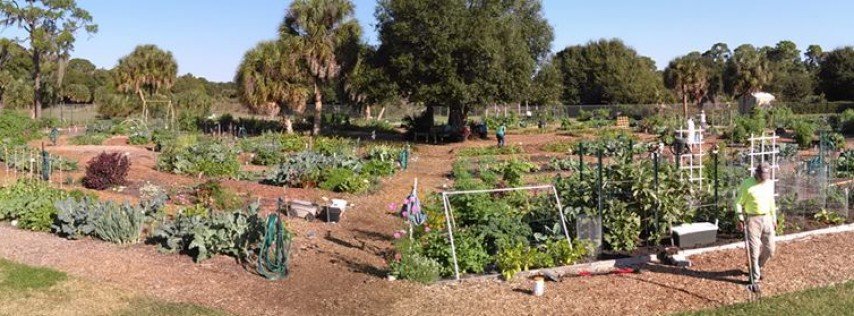 Culverhouse Community Garden Other Sarasota Sarasota