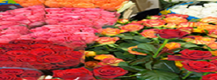 Minnesota Florists