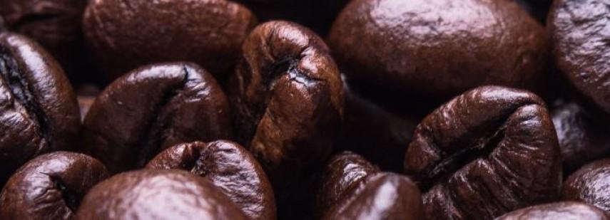 Cafe YOU