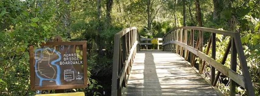 Morris Bridge Park