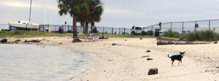 Davis Island Dog Beach