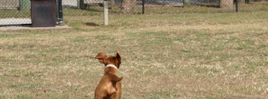 James Urbanski Dog Park at Al Lopez Park
