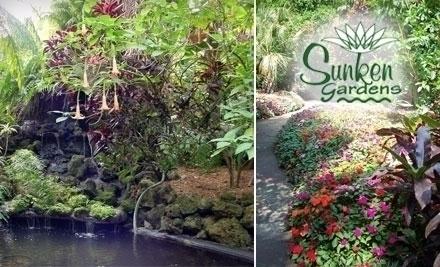 Sunken Gardens Travel Recreation St Petersburg St Petersburg
