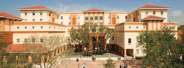 Ringling College Of Art And Design Education Sarasota Sarasota