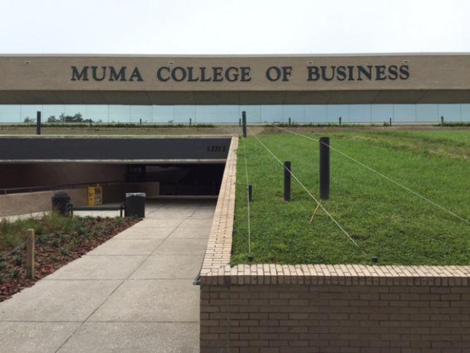 Usf Muma - Education - North Tampa - Tampa