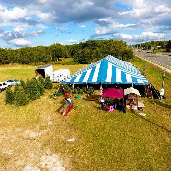 Christmas Tree Garden Ridge: Where To Buy Christmas Trees In Orlando
