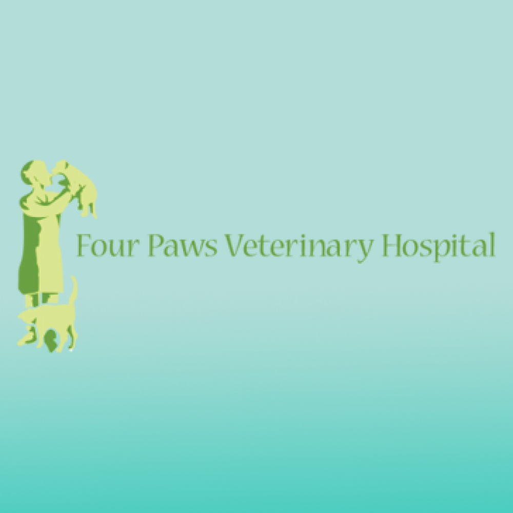 Four Paws Veterinary Hospital Other Brandon Riverview