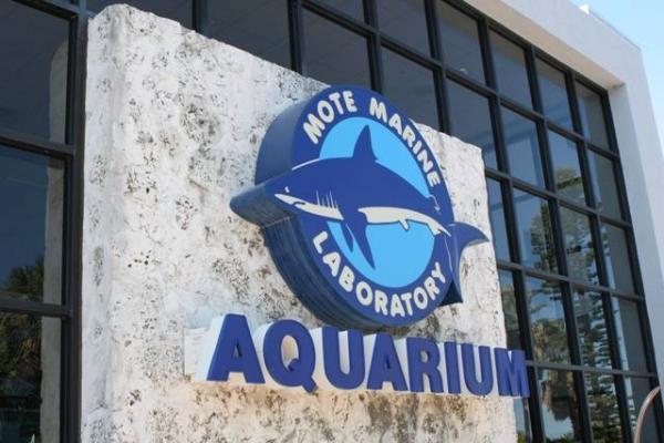 Mote Marine Laboratory & Aquarium - Travel & Recreation ...