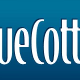 Design & Print Custom T-Shirts Online at BlueCotto